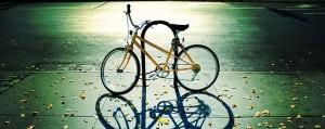 cycle-i